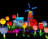 Lichtfestivals